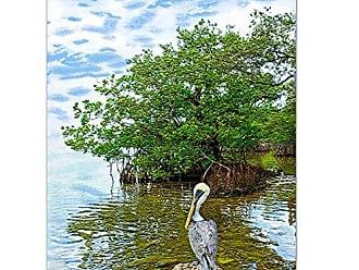 Ready2HangArt Ready2hangart Bruce Bain Pelican Canvas Wall Art, 24 x 18, Multicolored