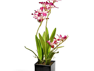 National Tree Company Ceramic Potted Orchid Silk Flower - NF36-5242S-1