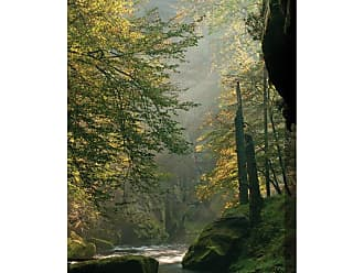 West of the Wind Sunlit Stream Canvas Art - 40 x 30 in. - OU-79151