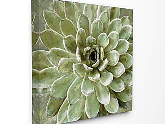 Stupell Industries The Stupell Home Décor Collection Green Painted Botanical Succulent Bloom Stretched Canvas Wall Art, Multi-Color