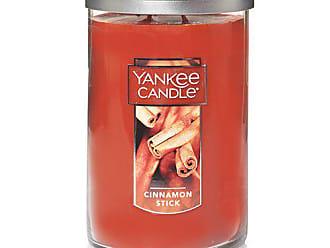 Yankee Candle Company Yankee Candle Large 2-Wick Tumbler Candle, Cinnamon Stick