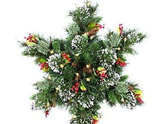 National Tree Company National Tree 32 Inch Wintry Pine Snowflake with Cones, Red Berries, Snowflakes and 50 Warm White Battery Operated LED Lights (WP1-300-32S-B1)