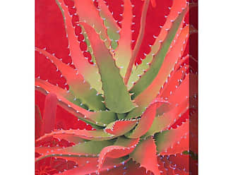 West of the Wind Red Agave Wall Art - 30W x 40H in. - OU-85005