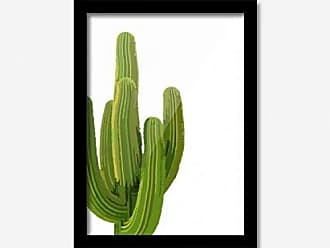Los Quadros Quadro Decorativo Cactus 45cmx33cm Los Quadros Preto