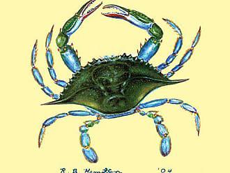 Betsy Drake CT004 Blue Crab Coaster, Set of 4