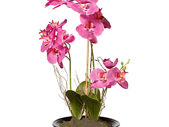 National Tree Company Artificial Orchid Flowers - NF36-5379P
