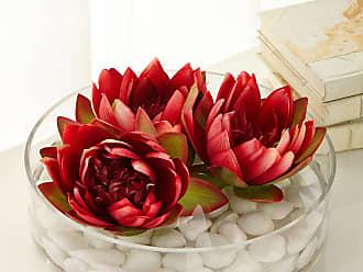 John-Richard Enchanting Water Lilies