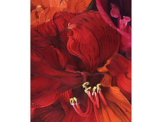 Louis Leonard Art Amaryllis in Love by Mai Yap Canvas Wall Art - MAY003-1827
