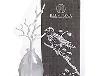 Zodax Illuminaria Porcelain Diffuser, French Gardenia Fragrance