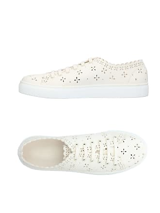 amp; Sneakers Rocha Tennis Basses Chaussures Simone t4fwqxpWt