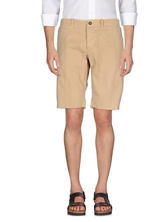 Pants Pants Editor Pants Editor Bermuda Bermuda Editor Bermuda The Editor The Editor The Bermuda Pants The The 0wA1TqxZ