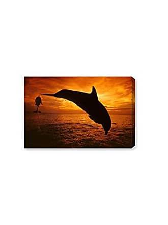 The Oliver Gal Artist Co. The Oliver Gal Artist Co. Nautical and Coastal Wall Art Canvas Prints Bottlenose Dolphin Roatan by David Fleetham Home Décor, 24 x 16, Black, Orange