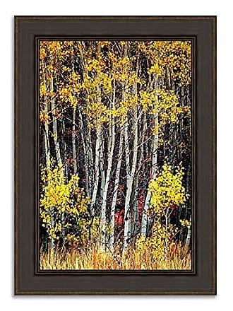 Tangletown Fine Art in The Aspens Framed Art Yellow, Black, White, Tan