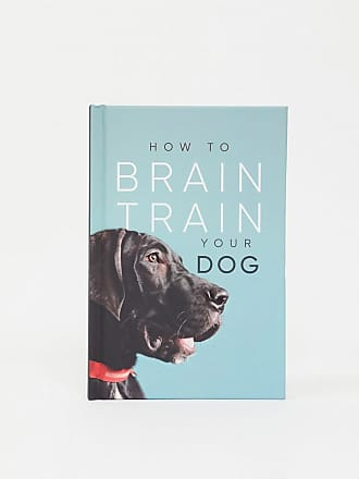 Allsorted How to Brain Train Your Dog book-Multi