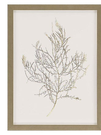 Paragon Picture Gallery Paragon Gold Foil Algae III Framed Wall Art - 3074