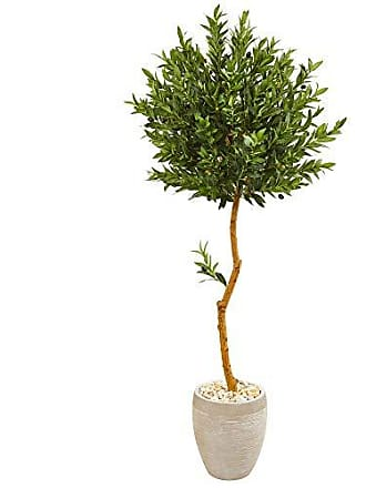 Nearly Natural 9343 5.5-Ft. Olive Topiary Artificial Sand Colored Planter UV Resistant (Indoor/Outdoor) Silk Trees Green