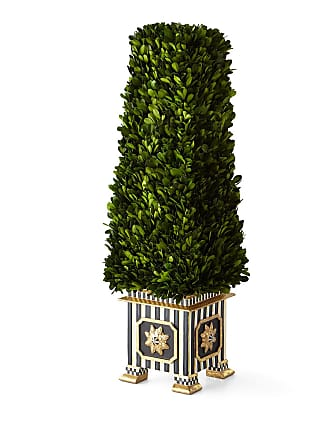 MacKenzie-Childs Preserved Boxwood Obelisk Topiary - Medium