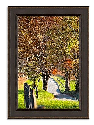 Tangletown Fine Art Country Road I Framed Art Green/Brown/Gray