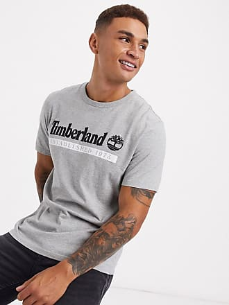 Timberland Established 1973 t-shirt in grey