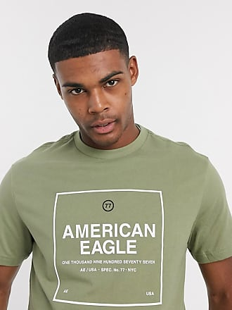 American Eagle Outfitters chest logo and back photo print t-shirt in washed olive-Green