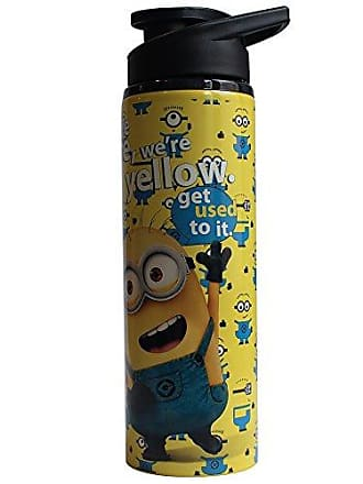 Universal Works Silver Buffalo DM3789ST Universal Despicable Me Stainless Steel Water Bottle, 25-Ounces