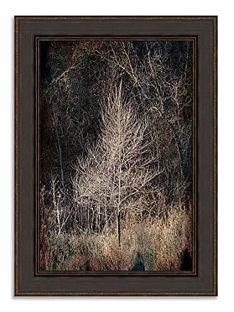 Tangletown Fine Art Illumination Framed Art, Taupe/Tan/Black