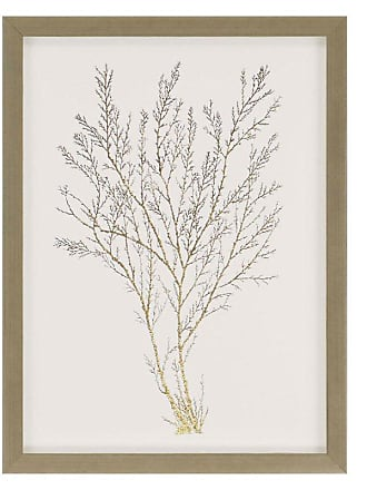 Paragon Picture Gallery Paragon Gold Foil Algae I Framed Wall Art - 3072