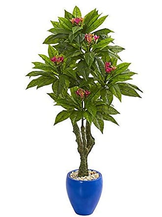Nearly Natural 9056 5-Ft. Plumeria Artificial Decorative Blue Planter UV Resistant (Indoor/Outdoor) Silk Trees Green