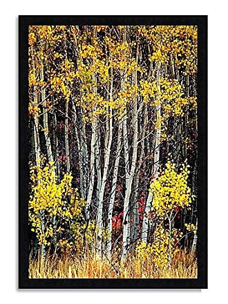 Tangletown Fine Art in The Aspens Framed Art Yellow/Black/White/Tan