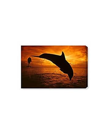 The Oliver Gal Artist Co. The Oliver Gal Artist Co. Nautical and Coastal Wall Art Canvas Prints Bottlenose Dolphin Roatan by David Fleetham Home Décor, 15 x 10, Black, Orange