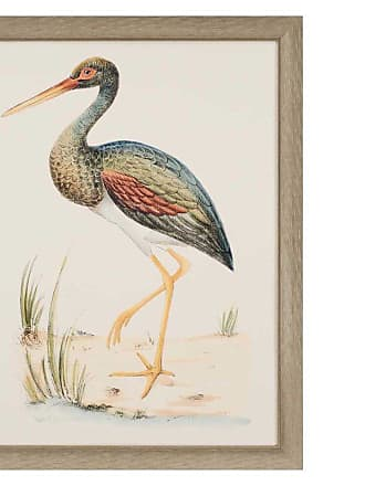 Paragon Picture Gallery Paragon Water Bird II Framed Wall Art - 1459