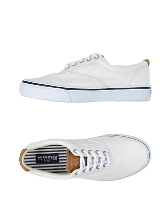 Sperry Sneakers Sider basses CHAUSSURES Top Tennis 7qwFx74r